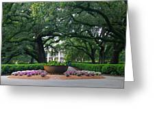Oak Alley Courtyard Greeting Card