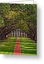 Oak Alley II Greeting Card