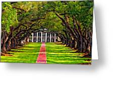 Oak Alley Paint Version Greeting Card by Steve Harrington