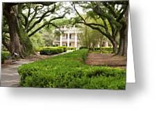 New Orleans Oak Alley Plantation Greeting Card