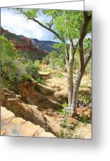 Over Slide Rock Greeting Card