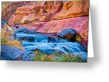 Oak Creek In The Spring Greeting Card