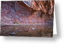 Oak Creek Reflection Greeting Card