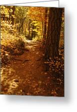 Oak Creek Trail Greeting Card
