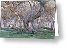 Oak Grove Greeting Card