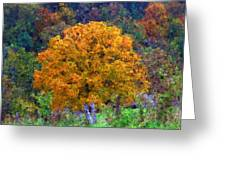 Oak In Autumn Color Greeting Card