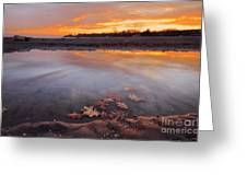 Oak Leaf And Beach Sunset Greeting Card