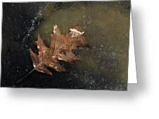 Oak Leaf On Ice Greeting Card