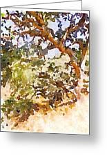 Oak Greeting Card