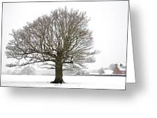 Oak Tree And Farm House Greeting Card