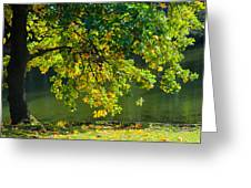 Oak Tree By The Pond - Featured 3 Greeting Card