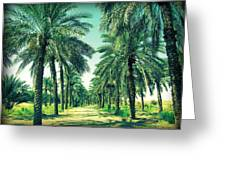 Oasis Greeting Card by Peter Waters