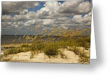 Oat And Dune Vista Greeting Card