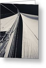 Obsession Sails 2 Black And White Greeting Card