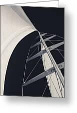 Obsession Sails 5 Black And White Greeting Card