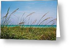 Ocean Breezes Greeting Card