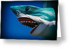 Ocean City Shark Attack Greeting Card