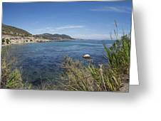 Ocean Mist Greeting Card