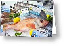 Ocean Perch On A Fish Counter Greeting Card