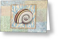 Oceanic Shell Collage Iv Greeting Card