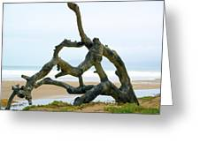 Oceano Dunes After The Storm II Greeting Card