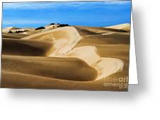 Oceano Sand Dunes Greeting Card