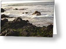Ocean's Edge Greeting Card