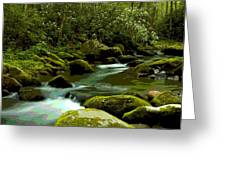 Oconaluftee River Greeting Card