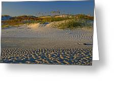 Ocracoke Dunes Greeting Card