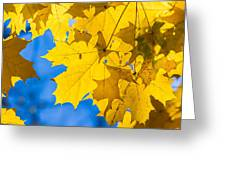 October Blues 8 - Square Greeting Card