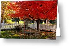 October Colors Greeting Card