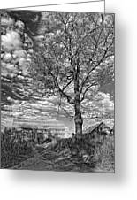 October Evening Monochrome Greeting Card