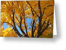 October Sky 1 Greeting Card
