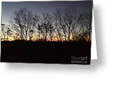 October Sunset Trees Silhouettes Greeting Card