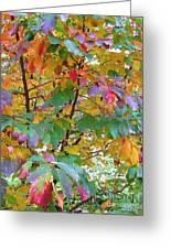 October Watercolors_4 Greeting Card by Halyna  Yarova