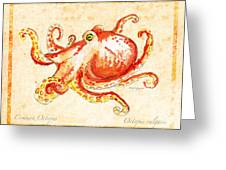 Octopus For Study Greeting Card