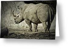 Odd-toed Rhino Greeting Card