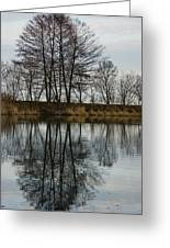 Of Mirrors And Trees Greeting Card