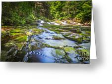 Off The Beaten Path Greeting Card