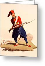 Officer Of European Infantry Of Ottoman Greeting Card by Thomas Charles Wageman