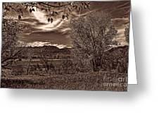 Ogden Valley I Greeting Card