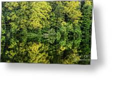 Ogle Lake Reflections 2 Greeting Card
