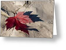 Oh Canada Maple Leaf Greeting Card