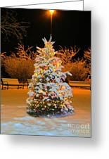 Oh Christmas Tree Greeting Card