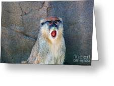 Oh Did You See That? Greeting Card