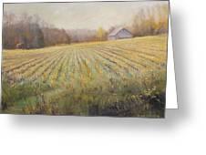 Ohio County Farm Indiana Greeting Card