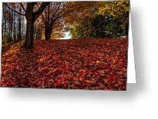 Ohio Fall Scenery Greeting Card
