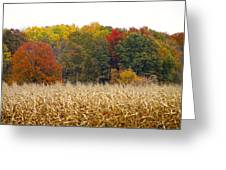 Ohio In November Greeting Card by Andrea Dale