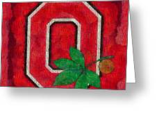 Ohio State Buckeyes On Canvas Greeting Card