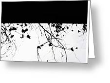 Oil Painting - Small Plant Branches Falling Over A Ledge - Horizontal Greeting Card